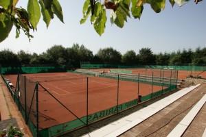 Tennis_Piranha_3